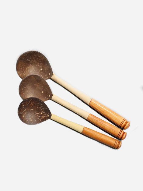 coconuspoonset